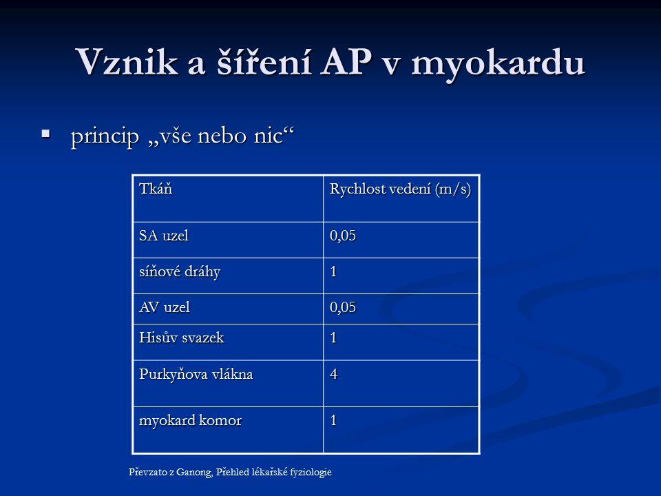 Vznik a šíření AP v myokardu