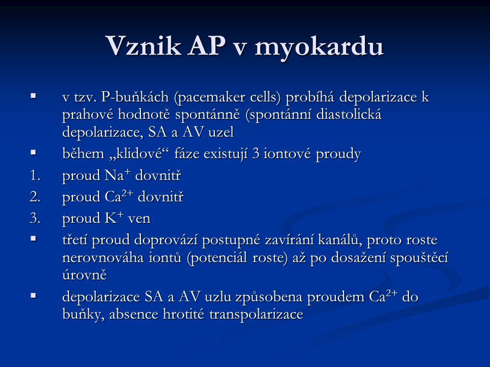 Vznik AP v myokardu