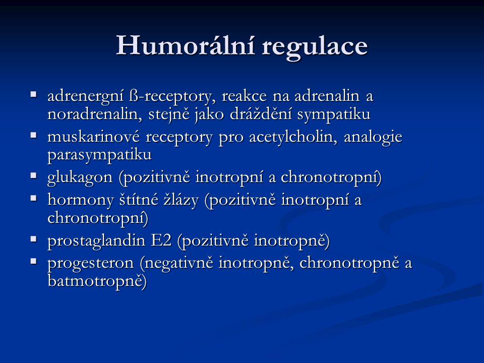 Humorální regulace adrenergní ß-receptory, reakce na adrenalin a noradrenalin, stejně jako dráždění sympatiku.
