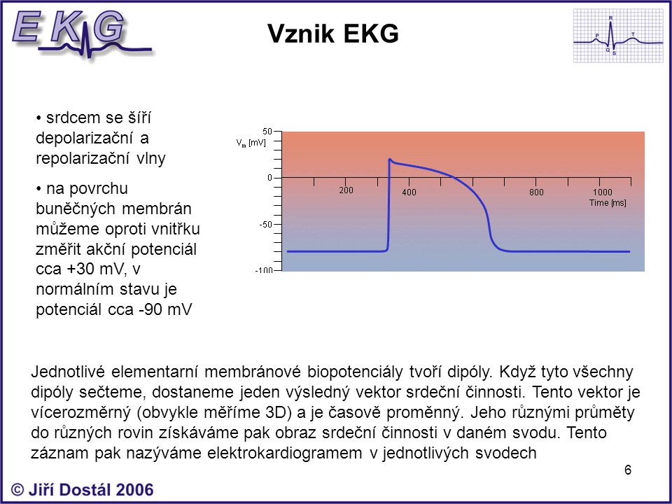 Vznik EKG srdcem se šíří depolarizační a repolarizační vlny