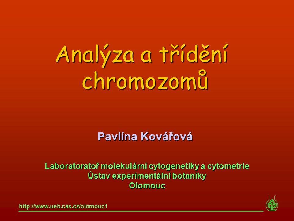 Analýza a třídění chromozomů Pavlína Kovářová