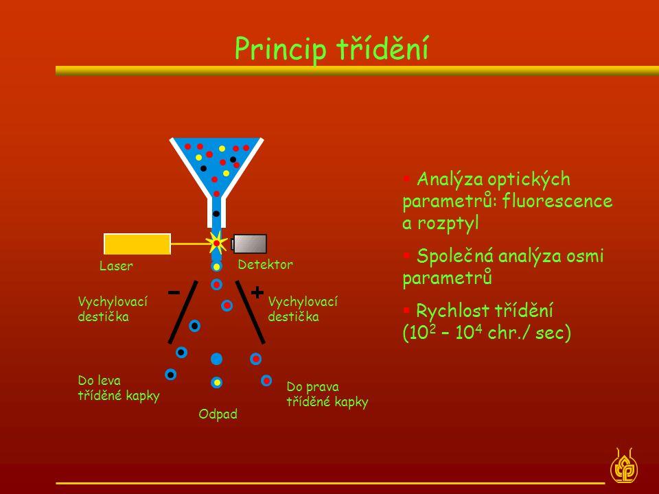 Princip třídění Analýza optických parametrů: fluorescence a rozptyl