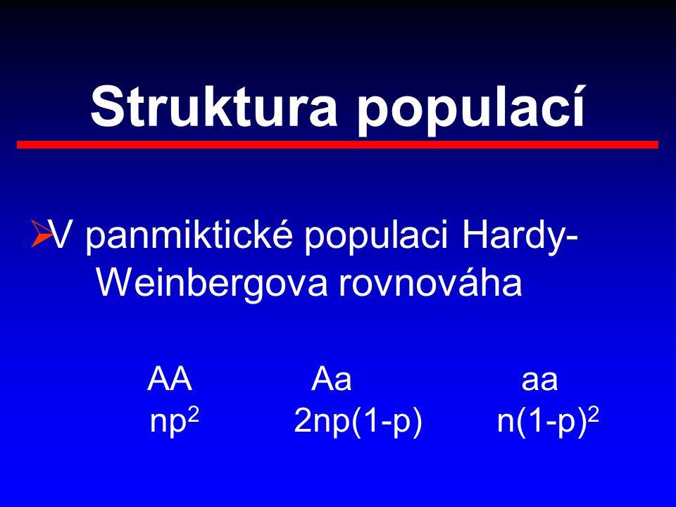 Struktura populací V panmiktické populaci Hardy- Weinbergova rovnováha