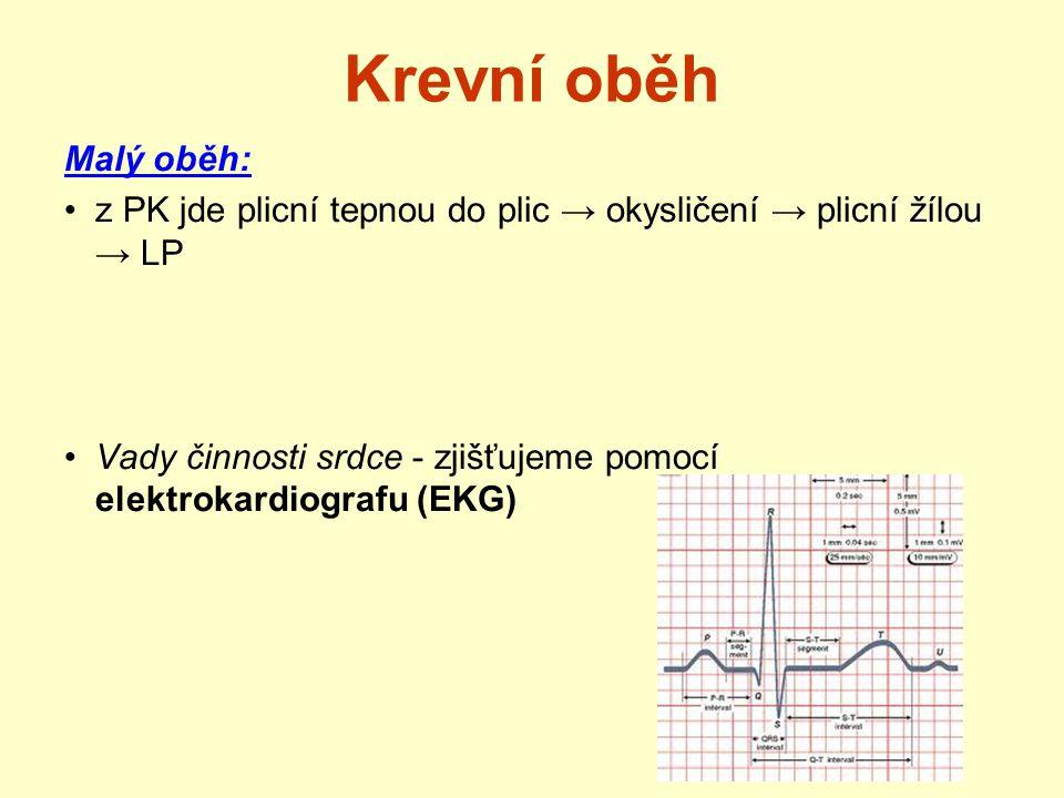 Krevní oběh Malý oběh: z PK jde plicní tepnou do plic → okysličení → plicní žílou → LP.