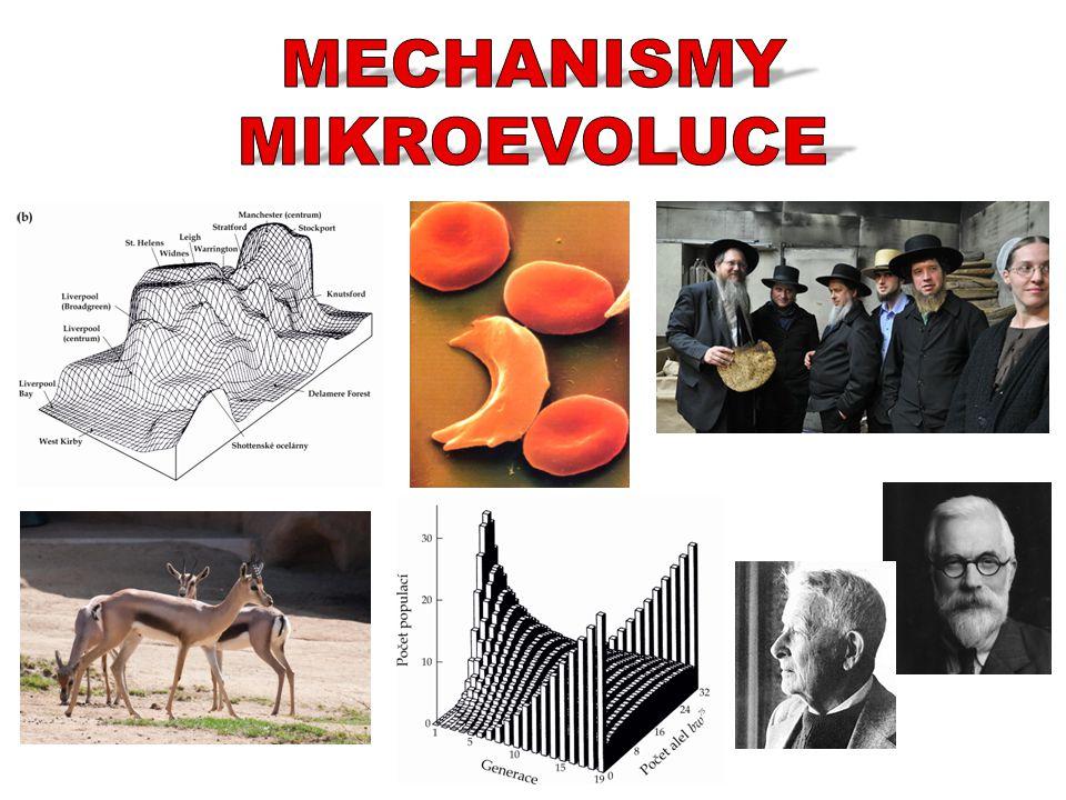 MECHANISMY MIKROEVOLUCE