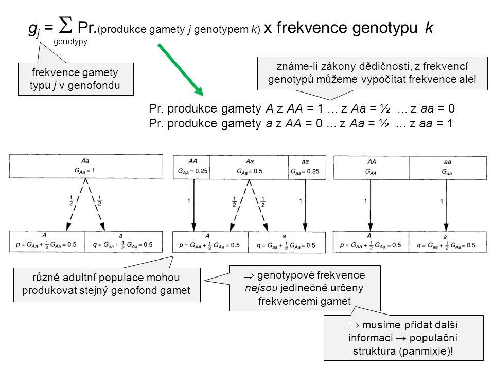 gj =  Pr.(produkce gamety j genotypem k) x frekvence genotypu k