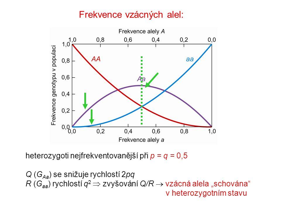 Frekvence vzácných alel: