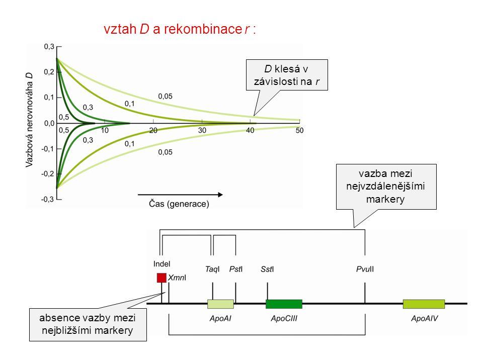 vztah D a rekombinace r :
