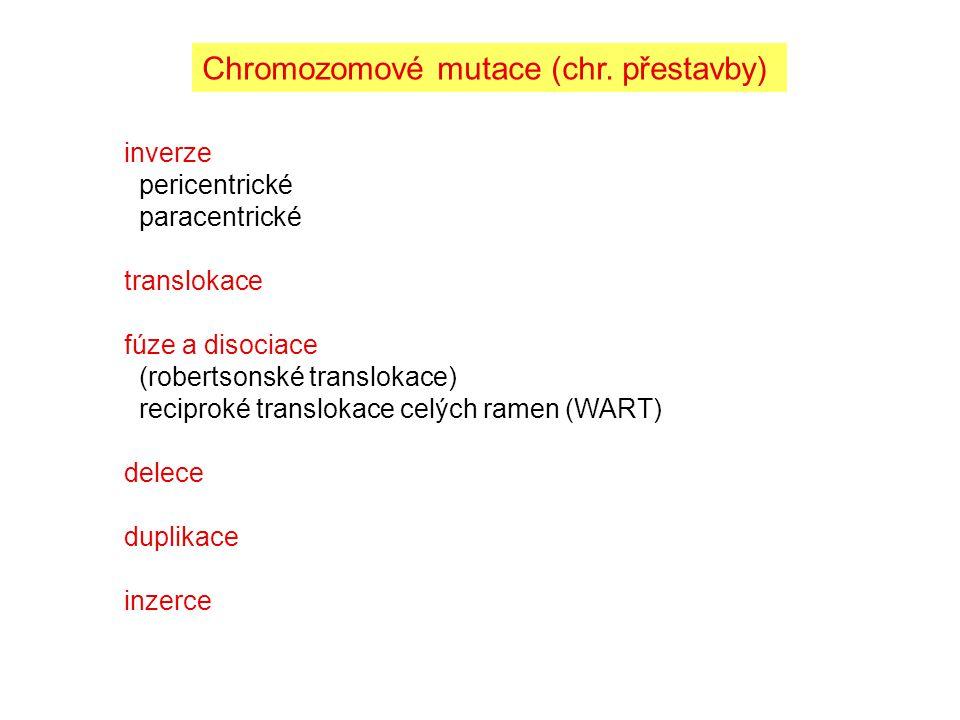 Chromozomové mutace (chr. přestavby)