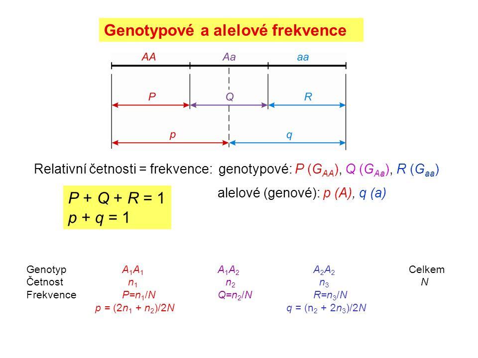 Genotypové a alelové frekvence