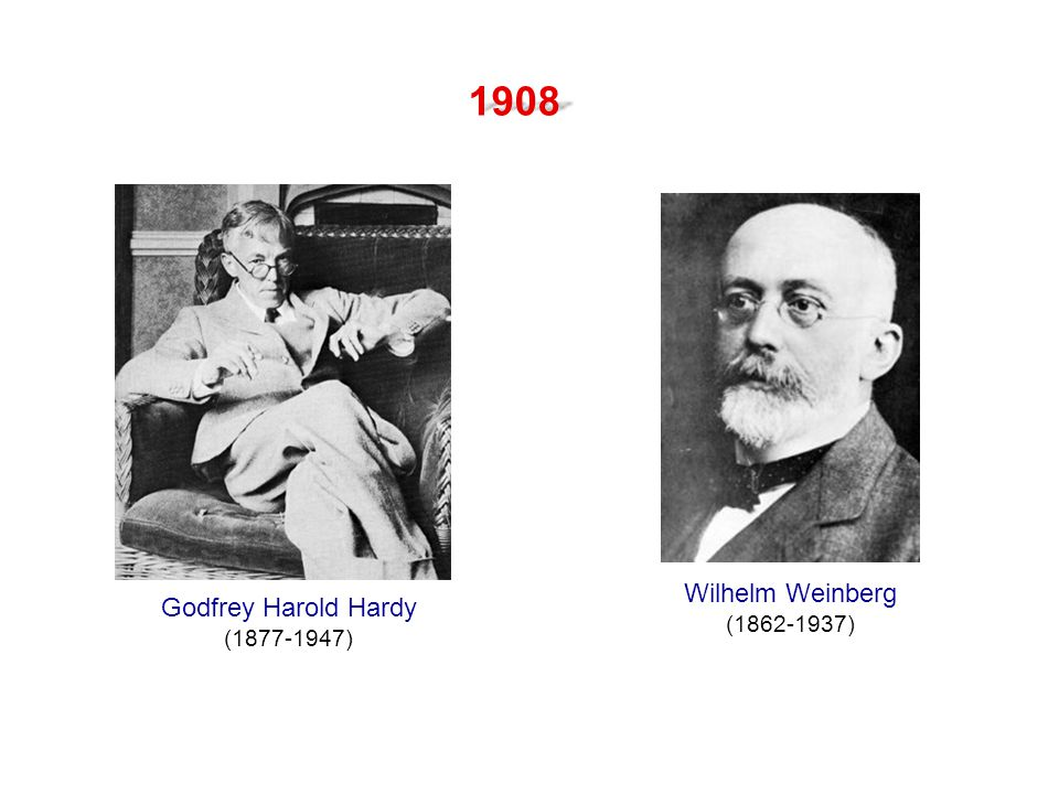 1908 Wilhelm Weinberg (1862-1937) Godfrey Harold Hardy (1877-1947)