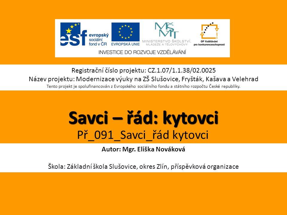 Autor: Mgr. Eliška Nováková