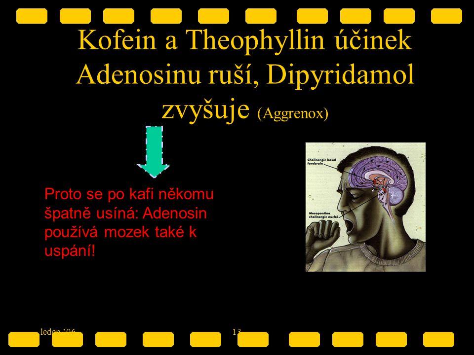 Kofein a Theophyllin účinek Adenosinu ruší, Dipyridamol zvyšuje (Aggrenox)