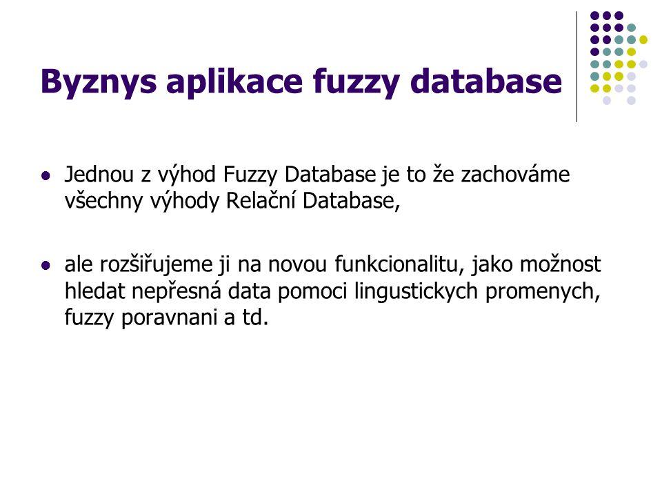 Byznys aplikace fuzzy database