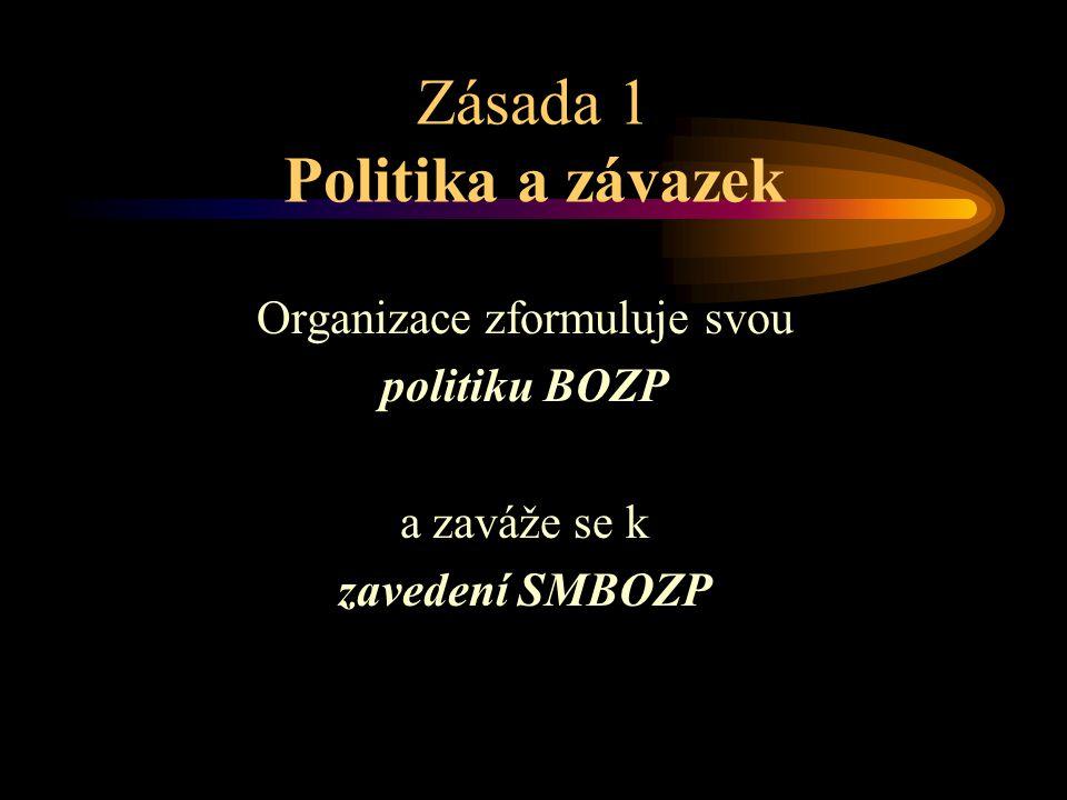 Zásada 1 Politika a závazek