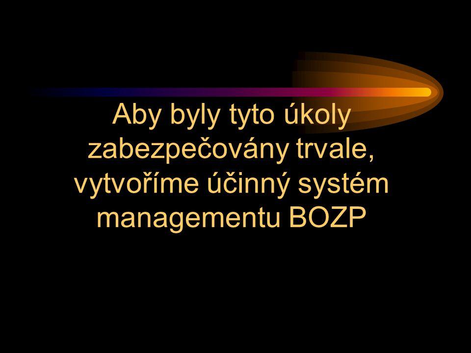 Aby byly tyto úkoly zabezpečovány trvale, vytvoříme účinný systém managementu BOZP