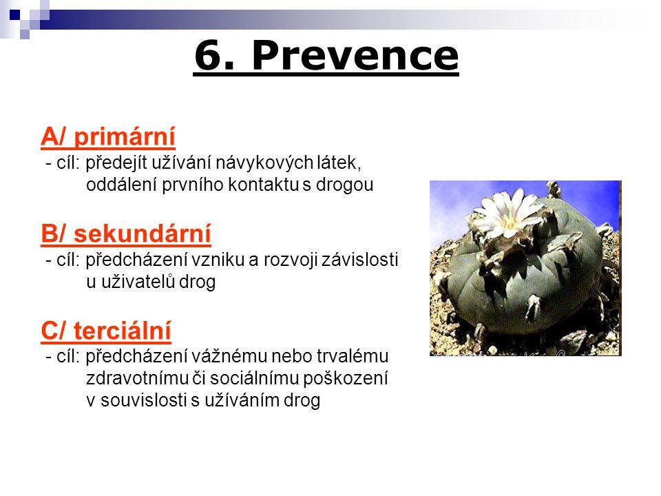 6. Prevence A/ primární B/ sekundární C/ terciální