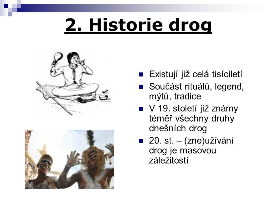 2. Historie drog Existují již celá tisíciletí