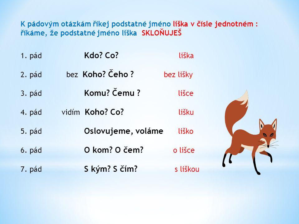 K pádovým otázkám říkej podstatné jméno liška v čísle jednotném :