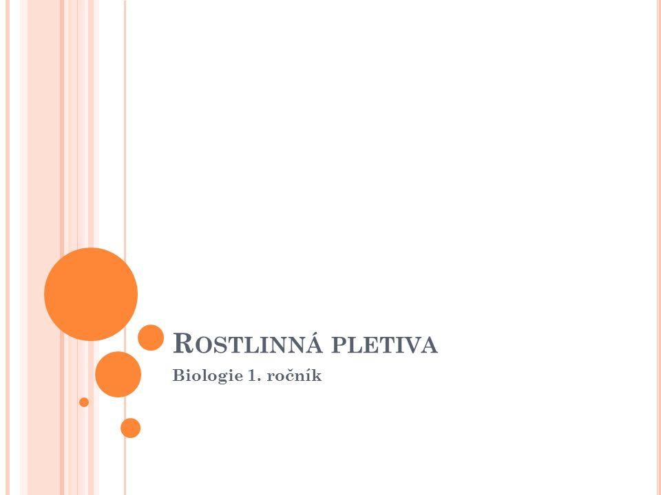 Rostlinná pletiva Biologie 1. ročník