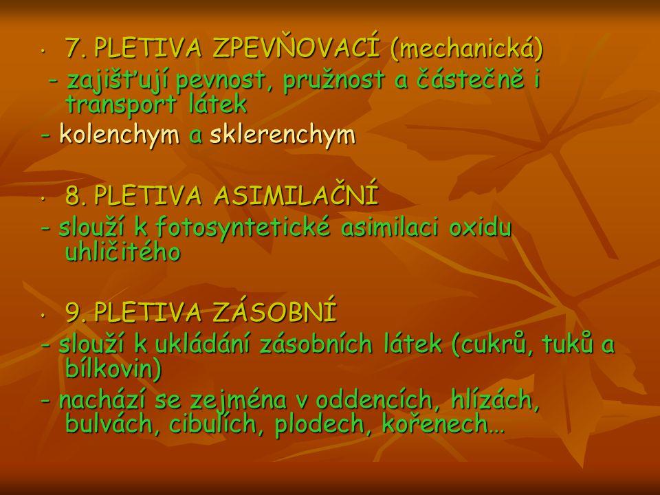 7. PLETIVA ZPEVŇOVACÍ (mechanická)
