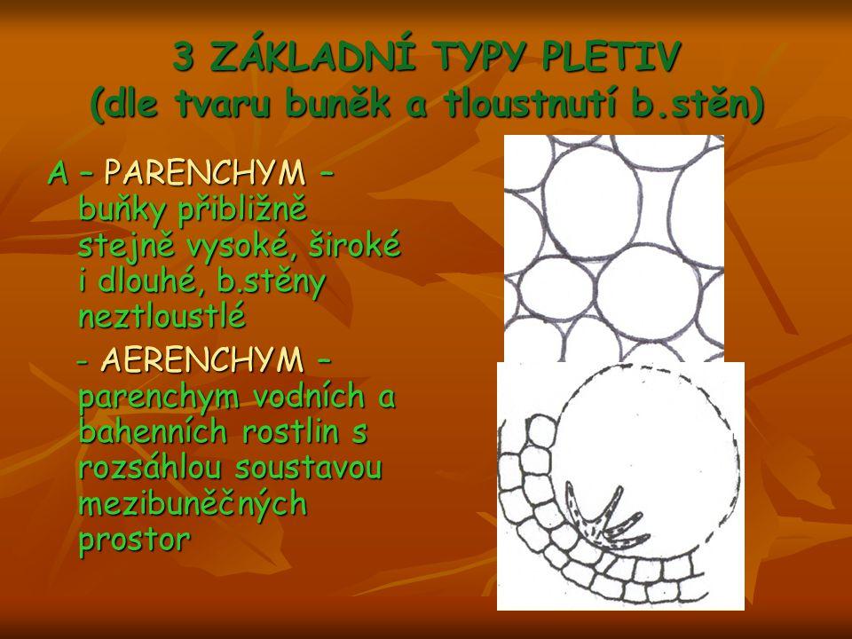 3 ZÁKLADNÍ TYPY PLETIV (dle tvaru buněk a tloustnutí b.stěn)