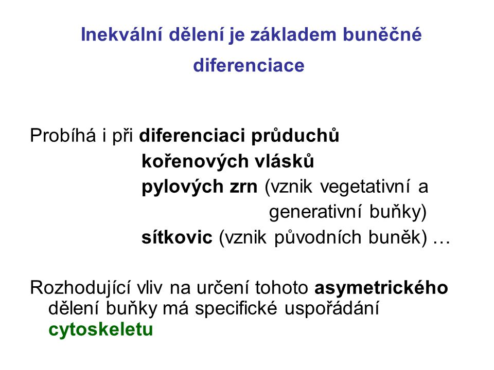 Inekvální dělení je základem buněčné diferenciace