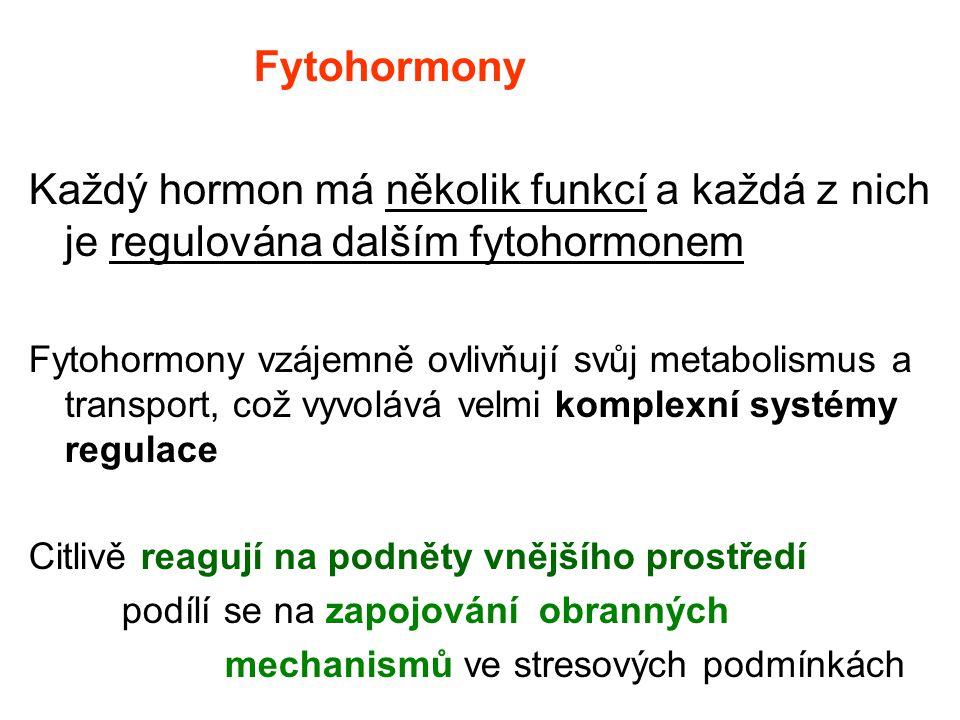 Fytohormony Každý hormon má několik funkcí a každá z nich je regulována dalším fytohormonem.