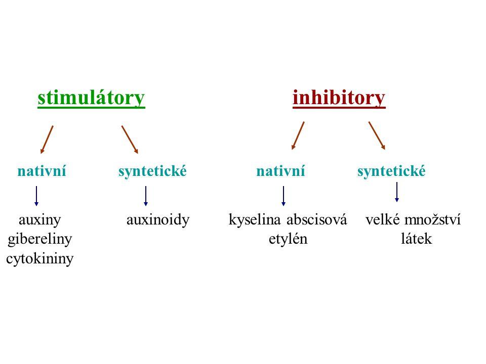 stimulátory inhibitory nativní syntetické nativní syntetické auxiny