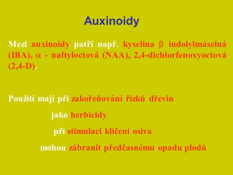 Auxinoidy Mezi auxinoidy patří např. kyselina b indolylmáselná (IBA), a - naftyloctová (NAA), 2,4-dichlorfenoxyoctová (2,4-D).