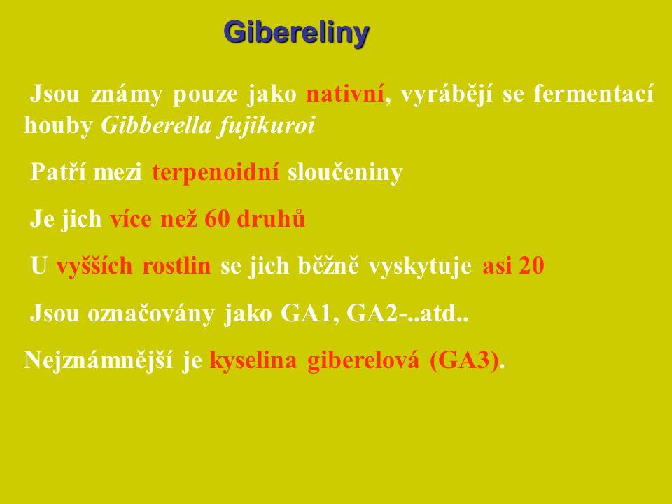 Gibereliny Jsou známy pouze jako nativní, vyrábějí se fermentací houby Gibberella fujikuroi. Patří mezi terpenoidní sloučeniny.