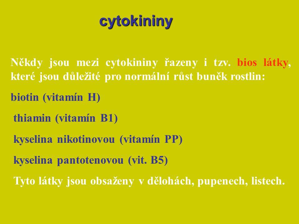 cytokininy Někdy jsou mezi cytokininy řazeny i tzv. bios látky, které jsou důležité pro normální růst buněk rostlin: