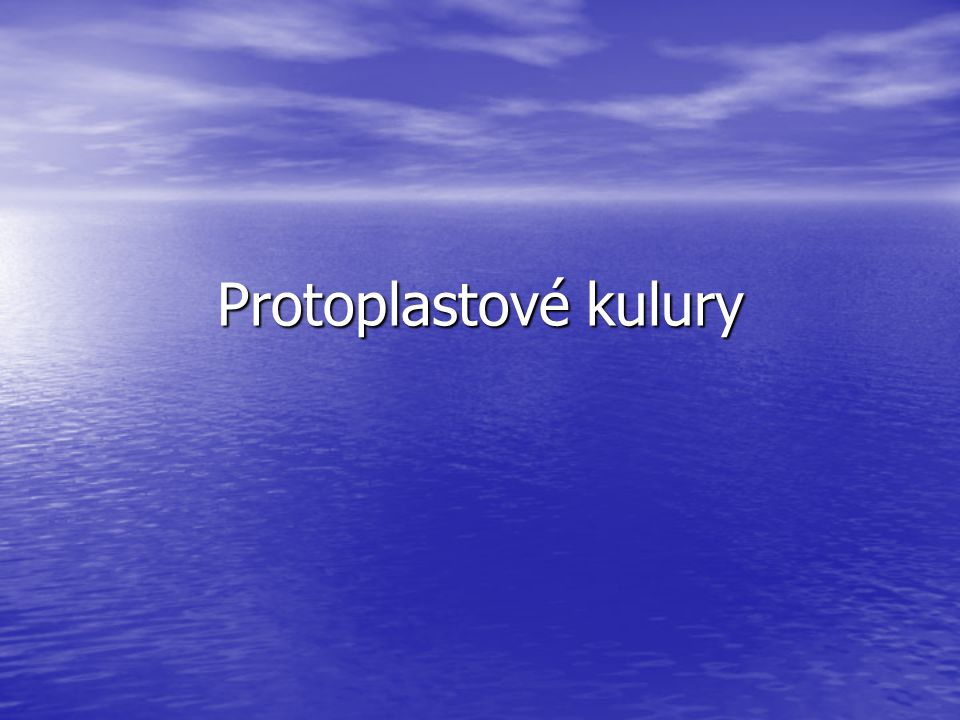 Protoplastové kulury