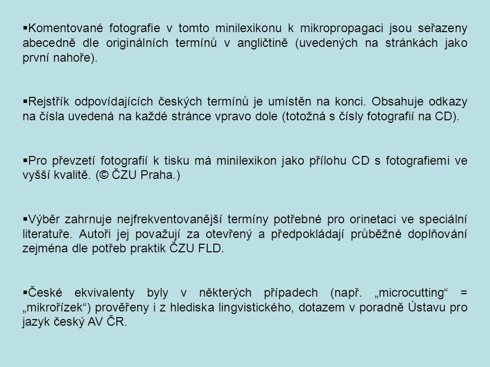Komentované fotografie v tomto minilexikonu k mikropropagaci jsou seřazeny abecedně dle originálních termínů v angličtině (uvedených na stránkách jako první nahoře).