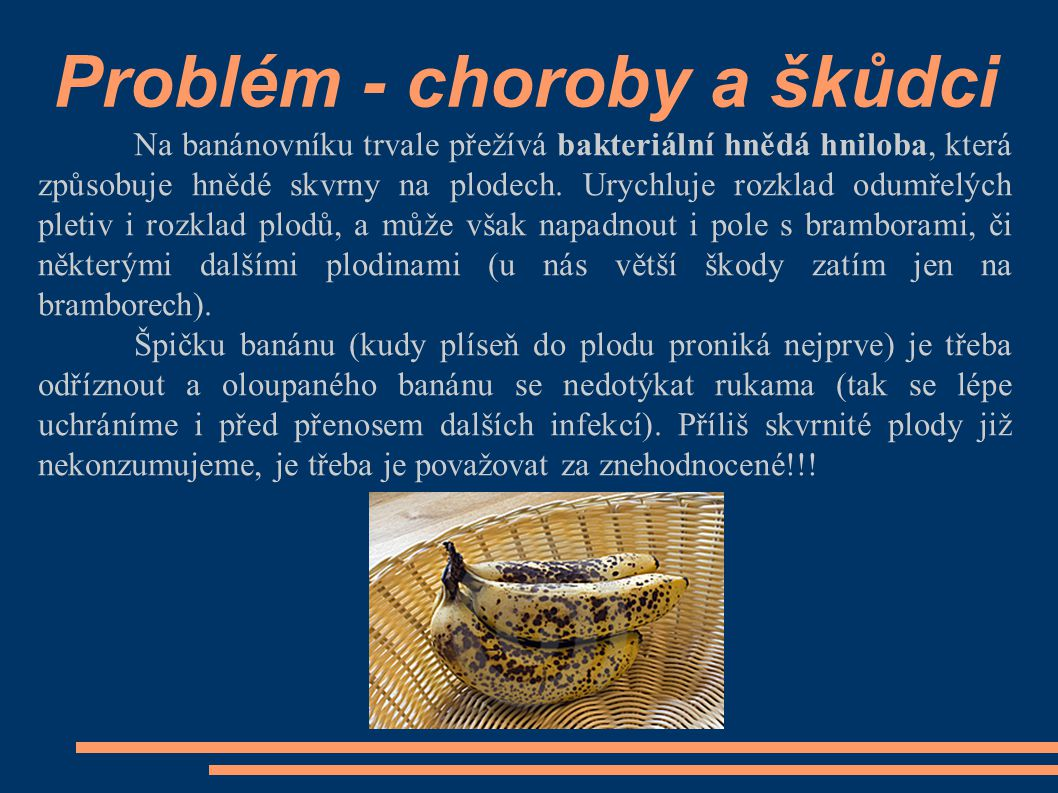 Problém - choroby a škůdci