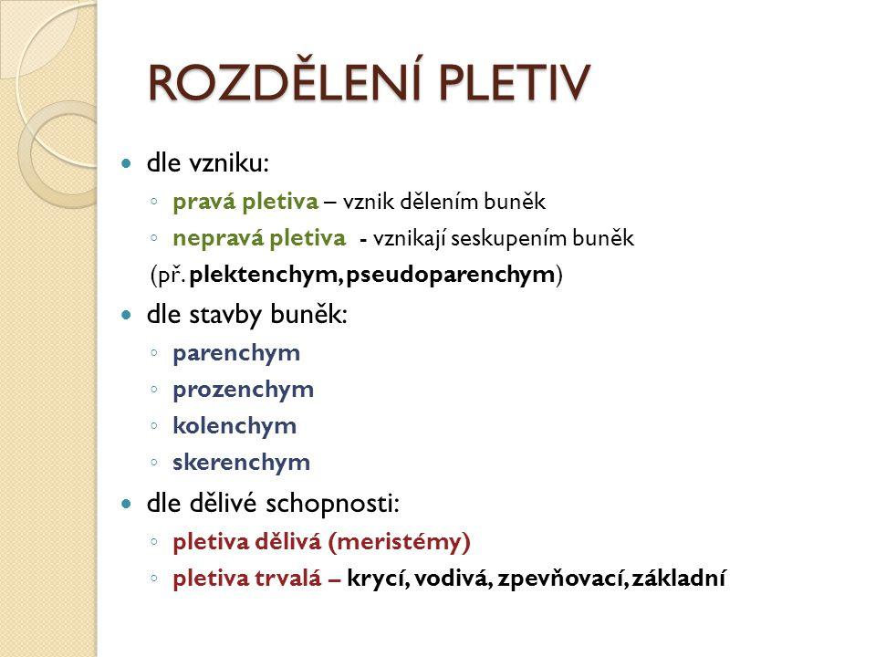 ROZDĚLENÍ PLETIV dle vzniku: dle stavby buněk: dle dělivé schopnosti: