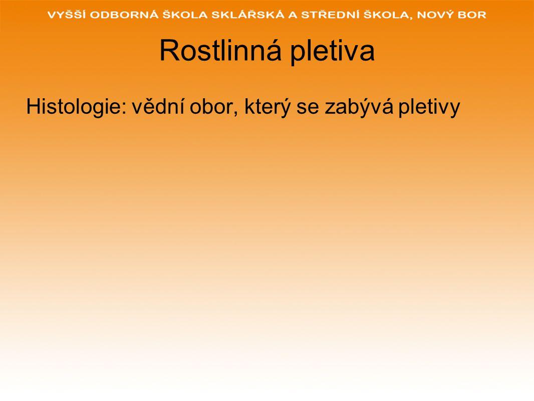 Rostlinná pletiva Histologie: vědní obor, který se zabývá pletivy
