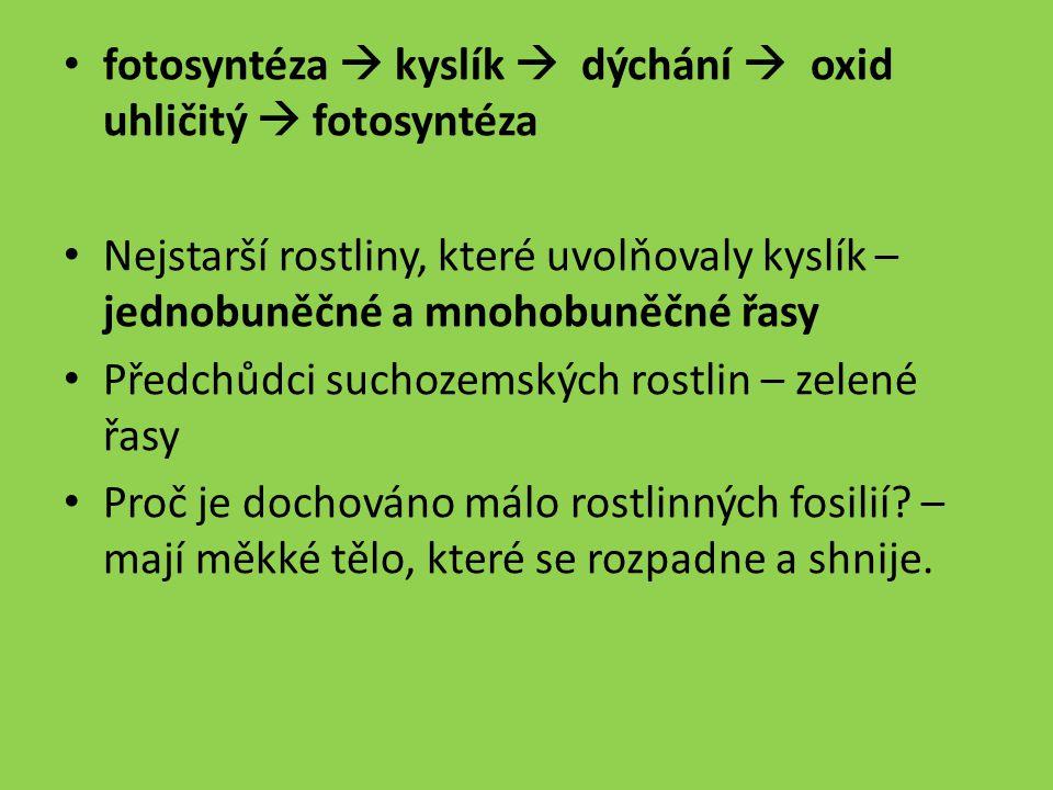 fotosyntéza  kyslík  dýchání  oxid uhličitý  fotosyntéza