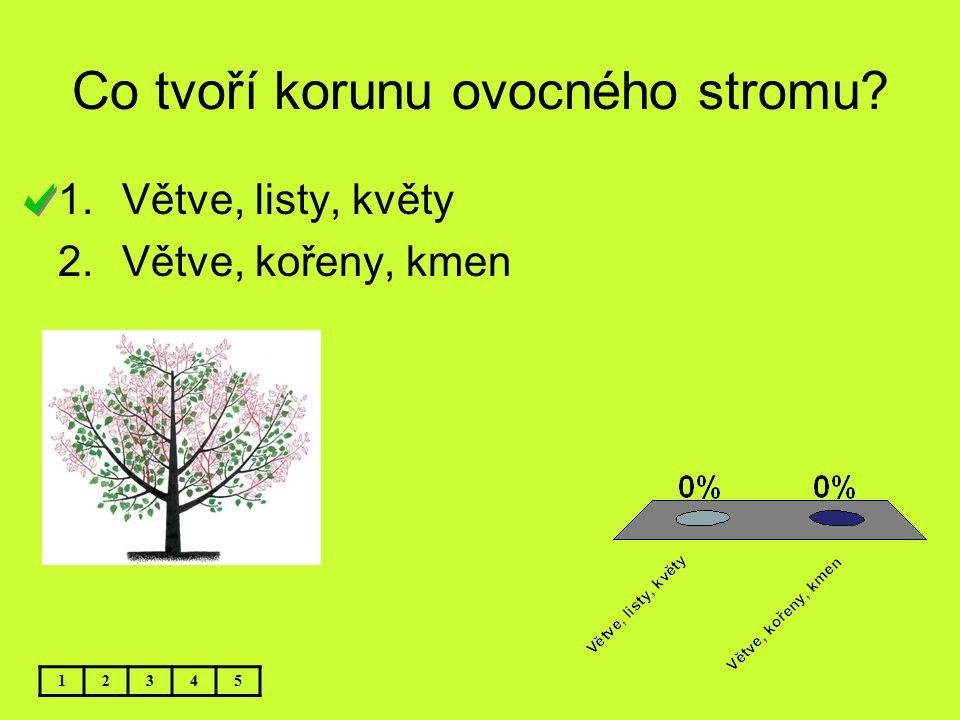 Co tvoří korunu ovocného stromu