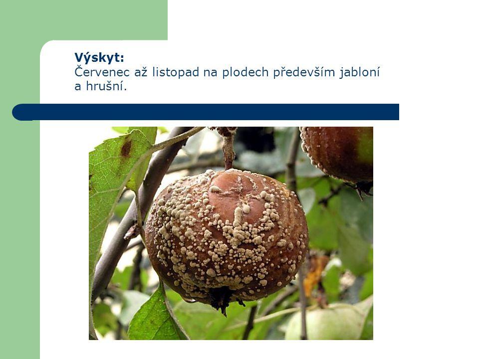 Výskyt: Červenec až listopad na plodech především jabloní a hrušní.