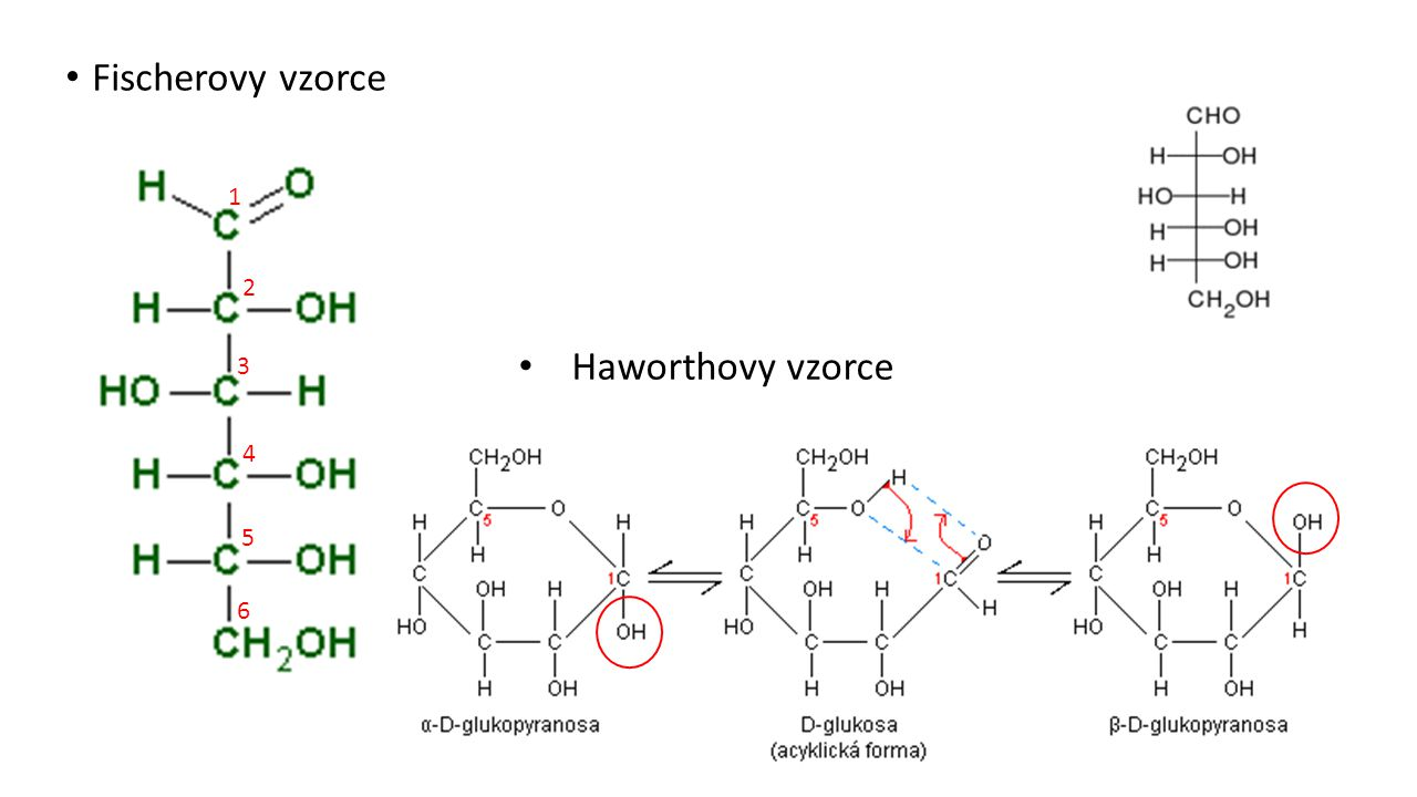 Fischerovy vzorce 1 2 Haworthovy vzorce 3 4 5 6