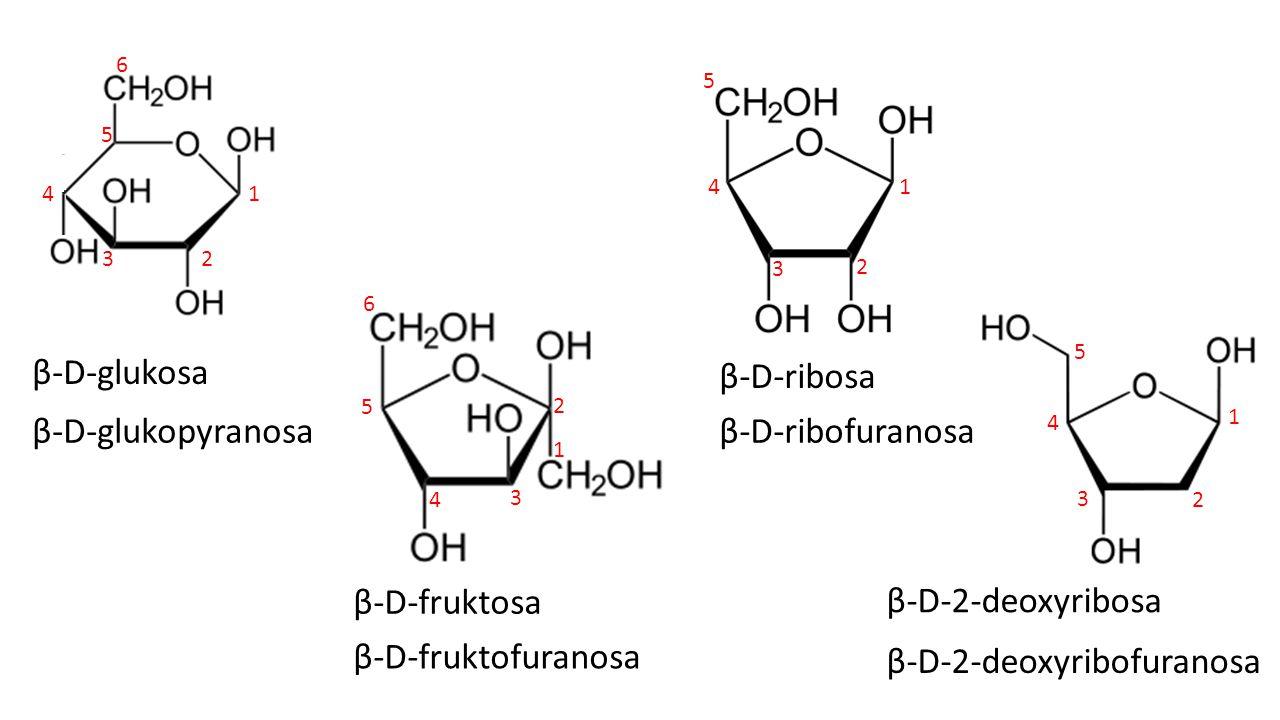 β-D-2-deoxyribofuranosa