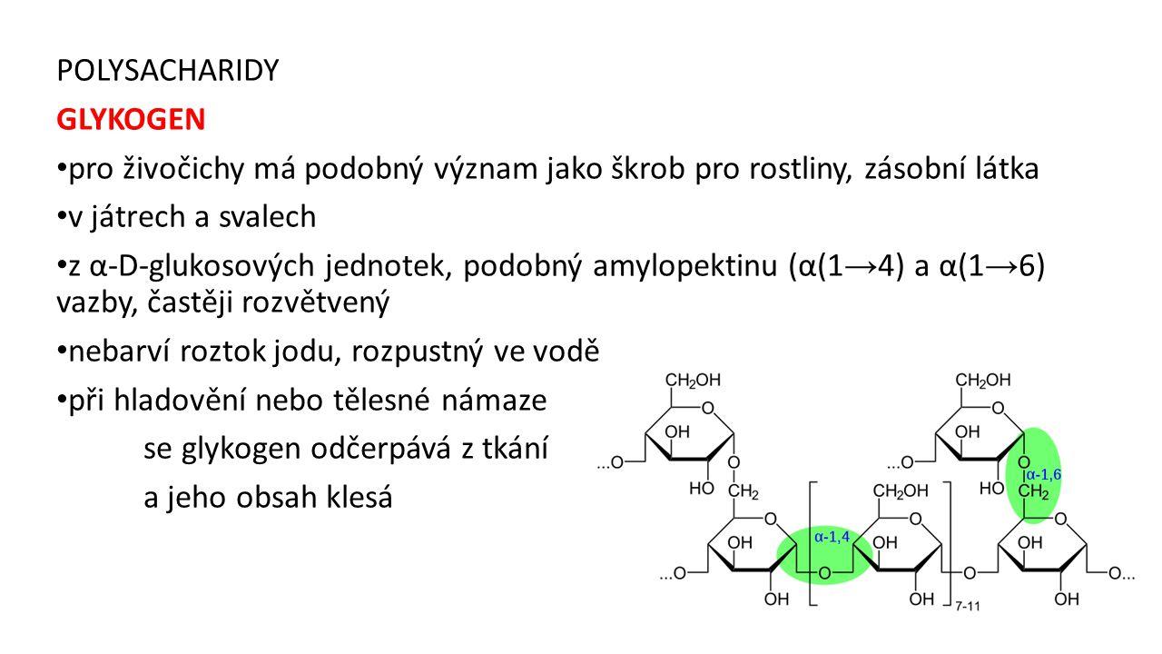 POLYSACHARIDY GLYKOGEN. pro živočichy má podobný význam jako škrob pro rostliny, zásobní látka. v játrech a svalech.