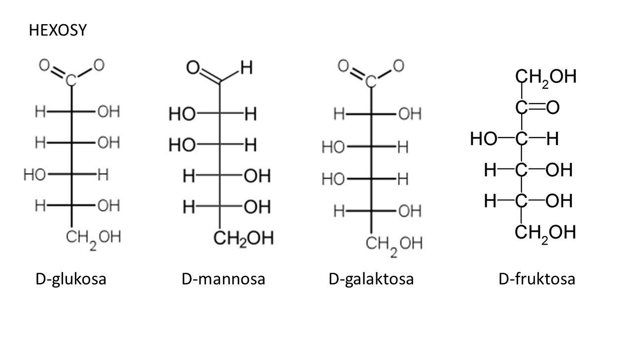 HEXOSY D-glukosa D-mannosa D-galaktosa D-fruktosa