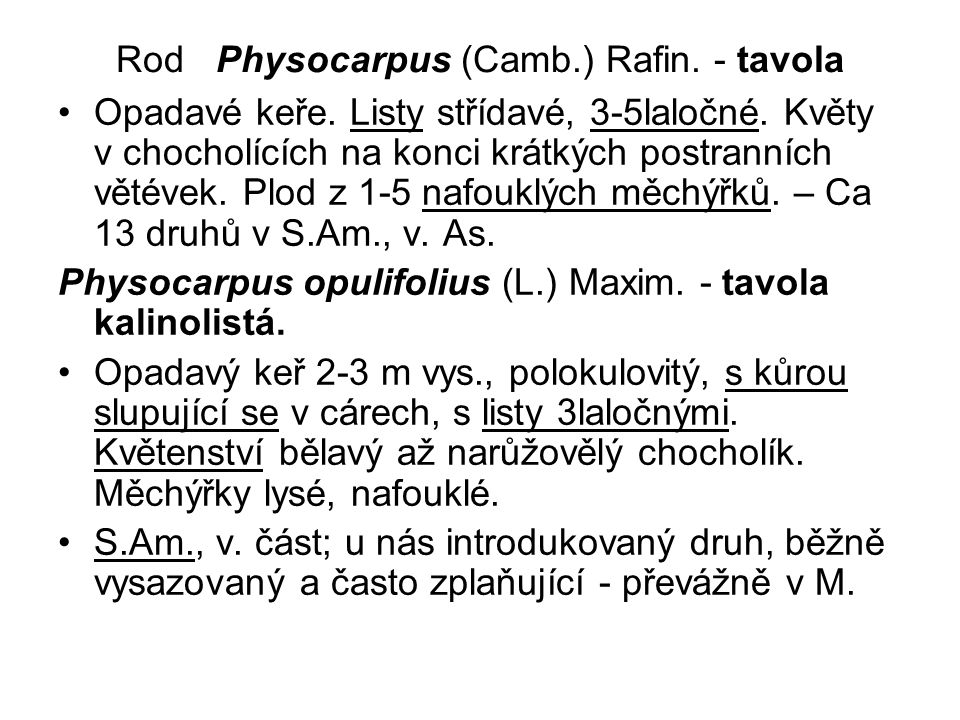 Rod Physocarpus (Camb.) Rafin. - tavola