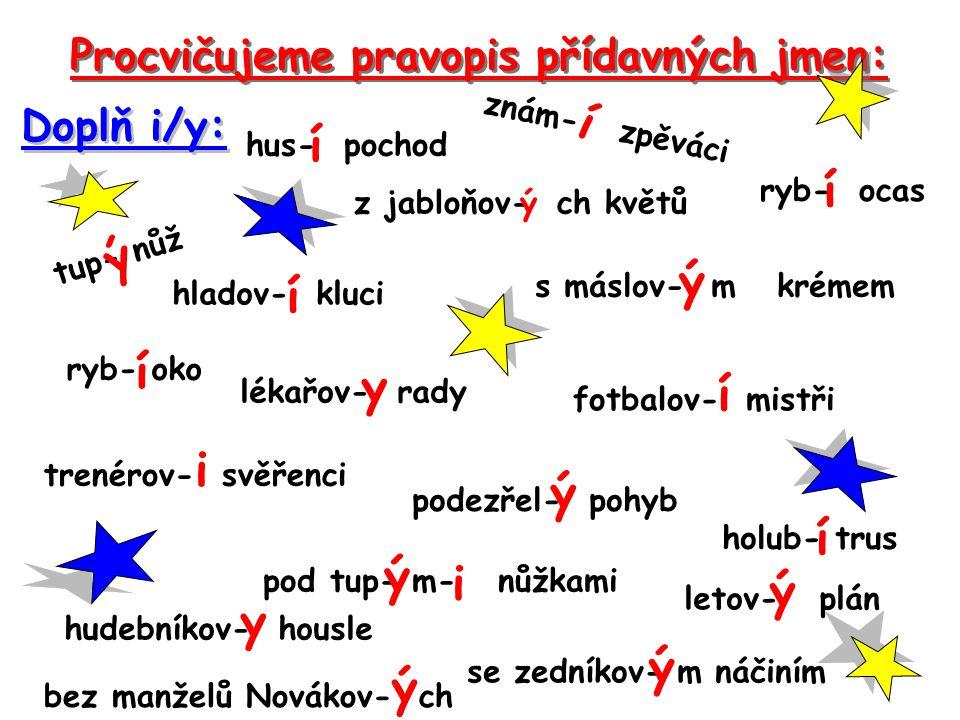 Procvičujeme pravopis přídavných jmen: