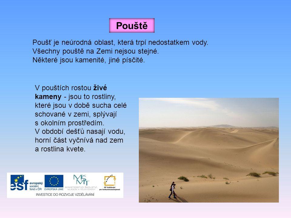 Pouště Poušť je neúrodná oblast, která trpí nedostatkem vody.