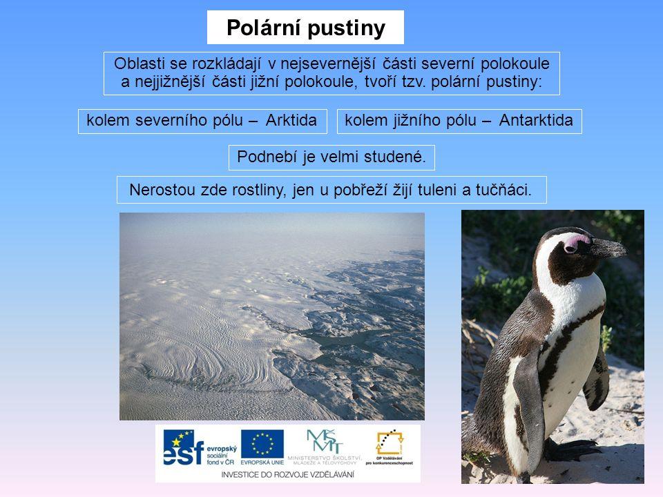 Polární pustiny Oblasti se rozkládají v nejsevernější části severní polokoule a nejjižnější části jižní polokoule, tvoří tzv. polární pustiny: