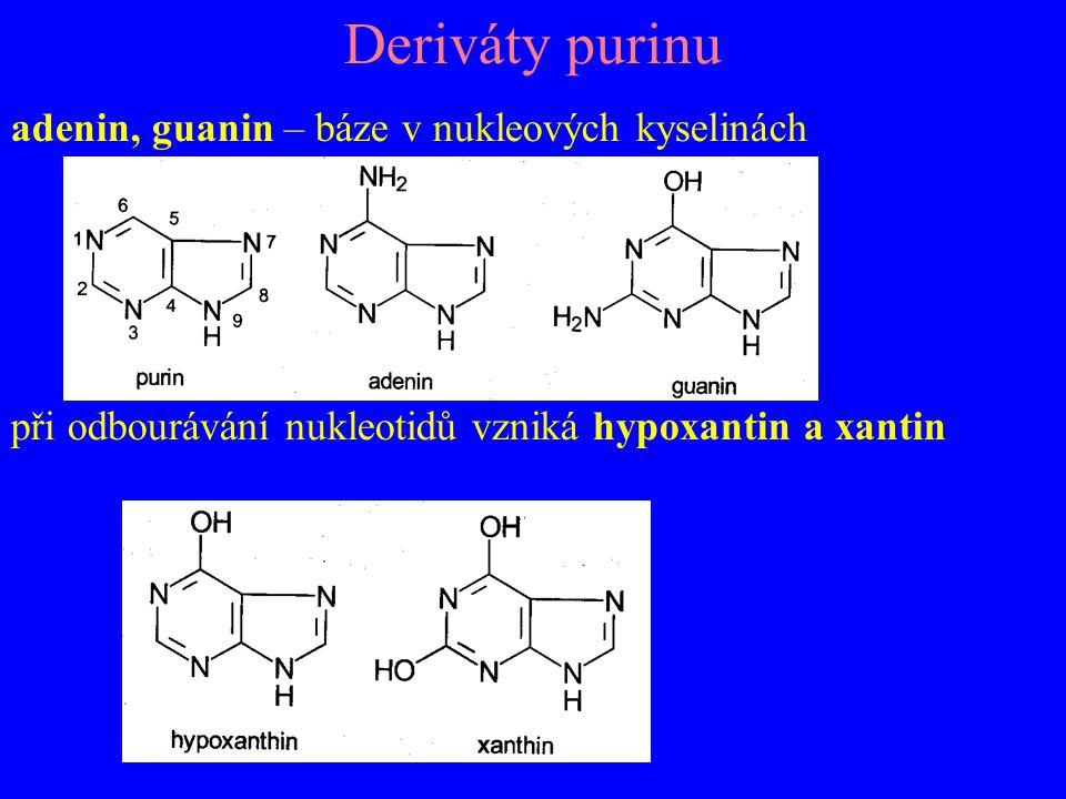 Deriváty purinu adenin, guanin – báze v nukleových kyselinách