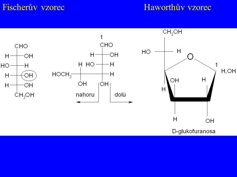 Fischerův vzorec Haworthův vzorec